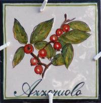 Logo-Azzeruolo