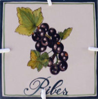 Logo-Ribes